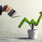 Stratégie croissance interne